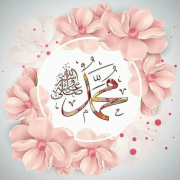 Islamic WhatsApp DP 4