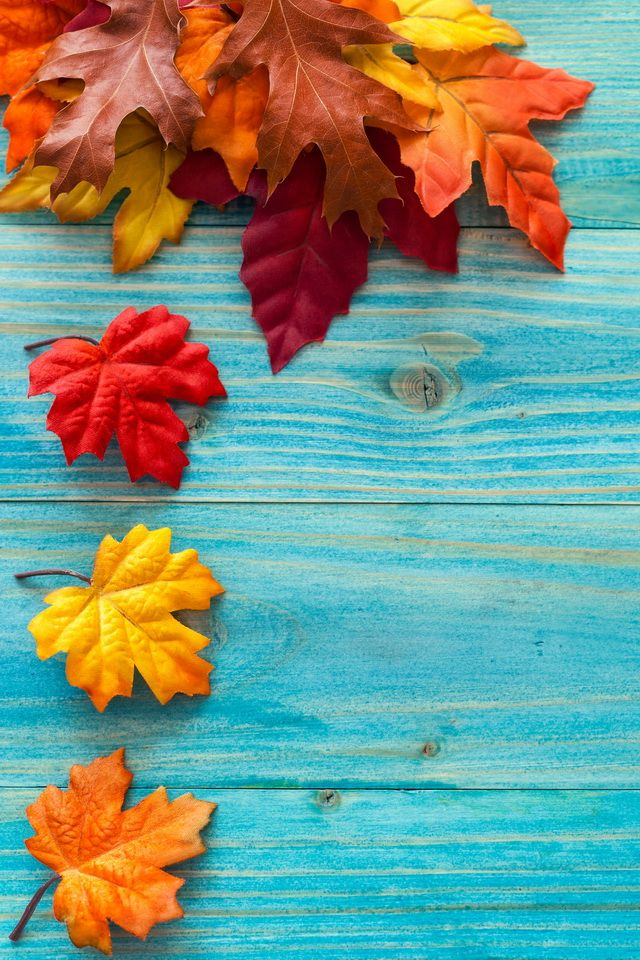 iPhone Fall Wallpaper 2